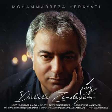 دانلود اهنگ جدید و خوب محمدرضا هدایتی به نام دلیل زندگیم