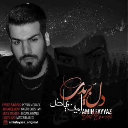 دانلود اهنگ جدید امین فیاض به نام دل بریدی